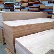 Hardwood Bracing Ply