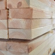 Baltic Pine Untreated Studs